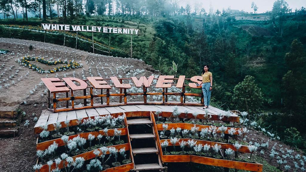 Taman Edelweis Bali yang dibangun kembali setelah erupsi Gunung Agung
