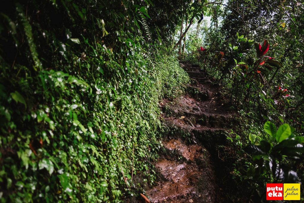 Jalan setapak menanjak yang licin terkena air hujan