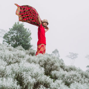 Padang Bunga Kasna Si Cantik Edelweis dari Bali