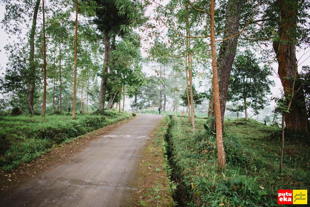Jalan menanjak menuju Padang Kasna