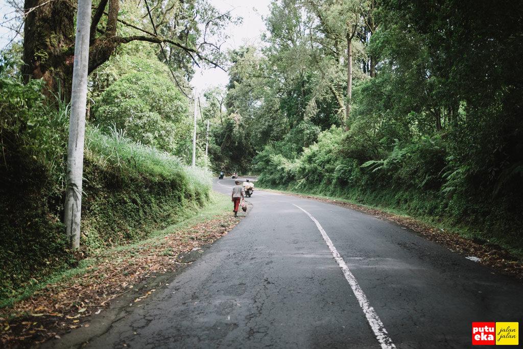 Jalanan menuju hutan Pinus yang tidak terlalu mulus