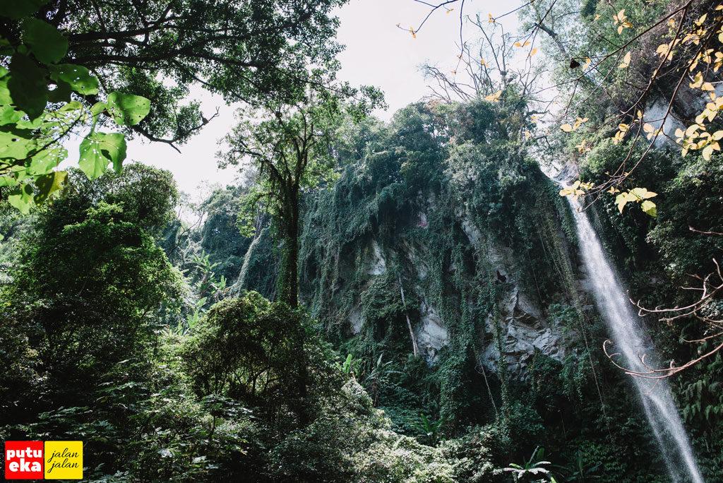 Air Terjun Blemantung dengan tebing kehijauan ditutupi tumbuhan