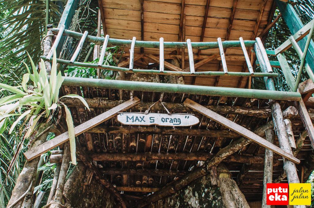 Lima orang maksimal yang bisa naik ke rumah pohon