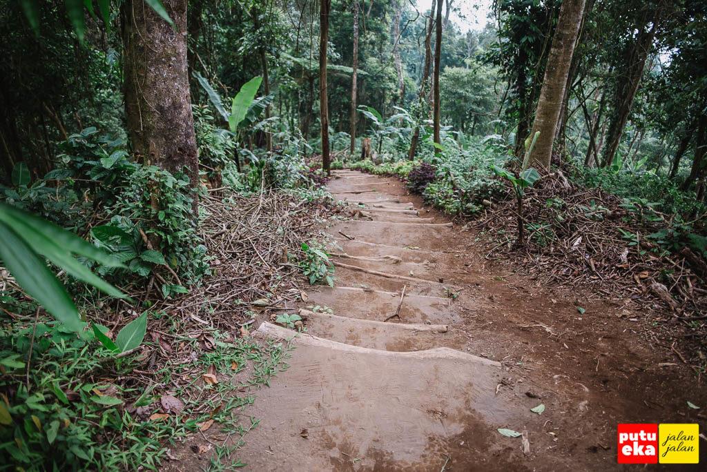 Jalan menurun berundak dari tanah dengan batang kayu sebagai penguat