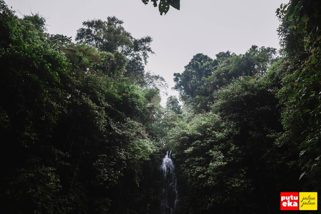 Air Terjun One yang mengalir dari ketinggian pepohonan