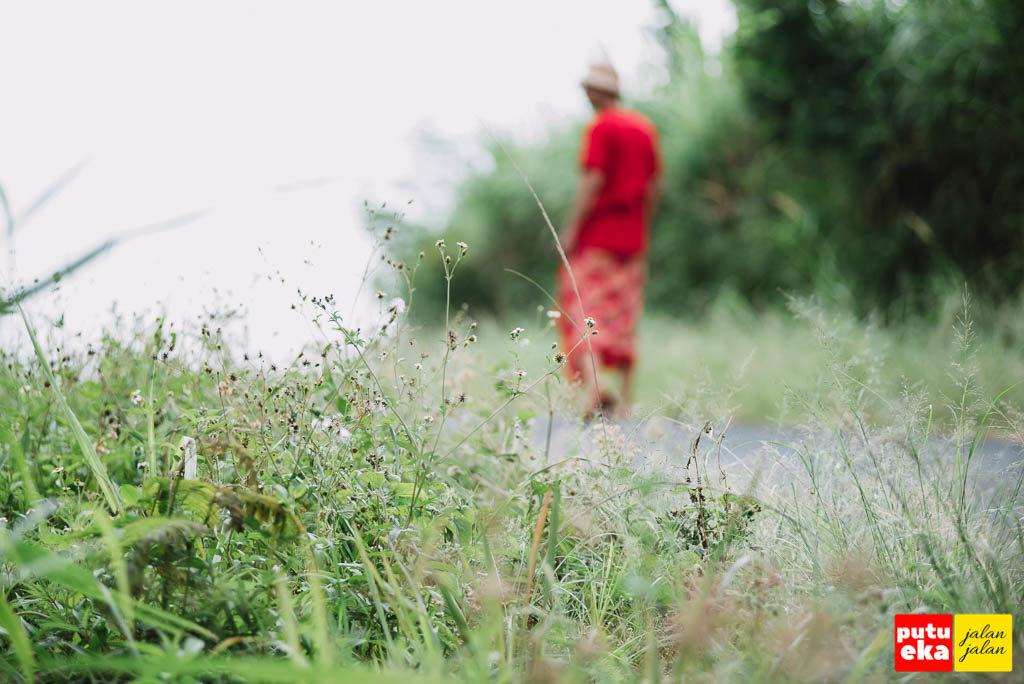 Menelusuri tepian jalan dengan rerumputan yang meninggi
