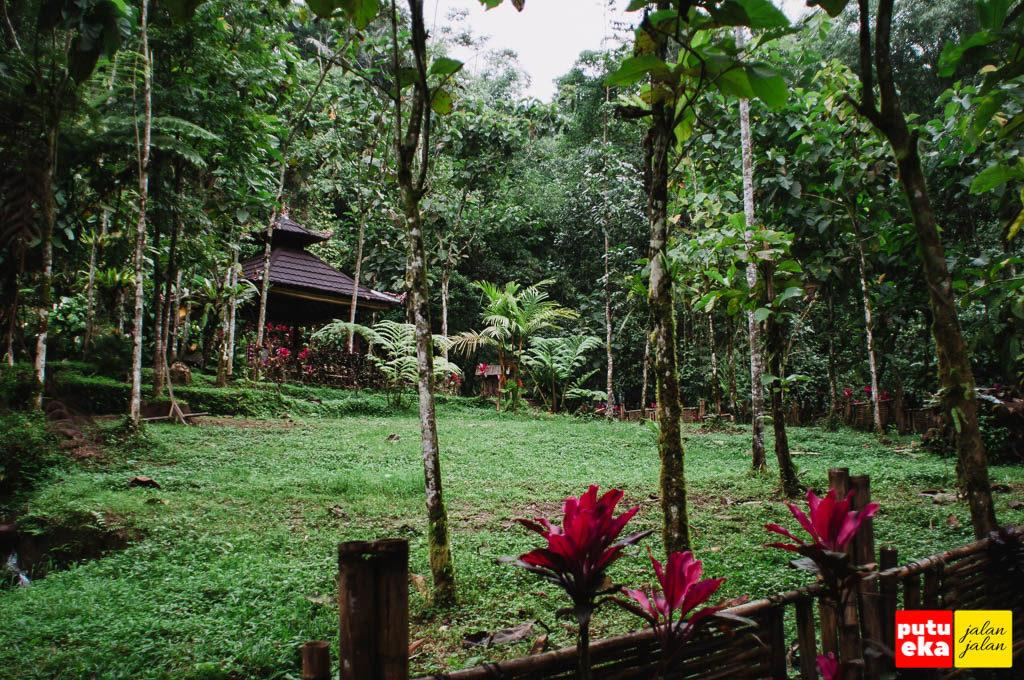 Area halaman tempat meditasi yang nampak menghijau