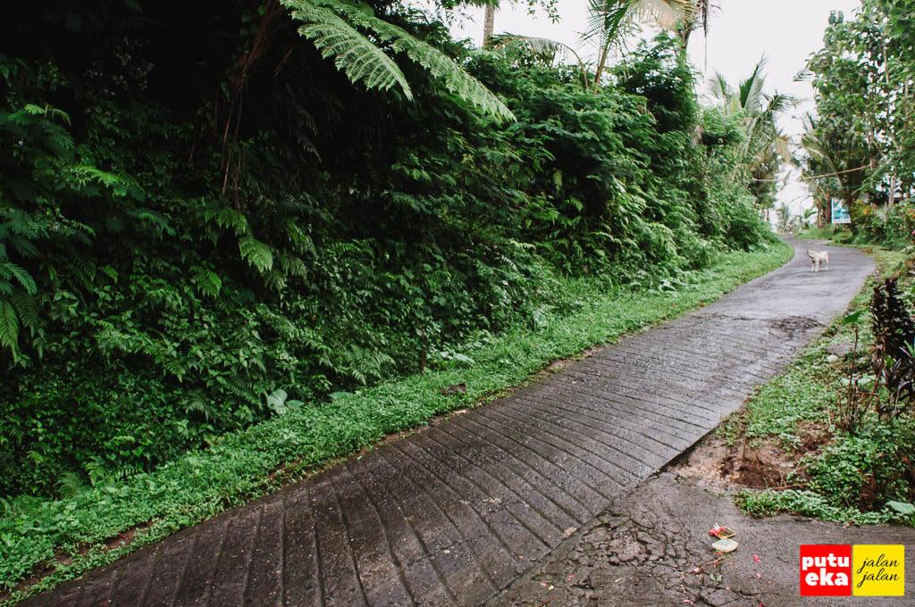 Jalan menanjak yang sudah disemen basah kena hujan