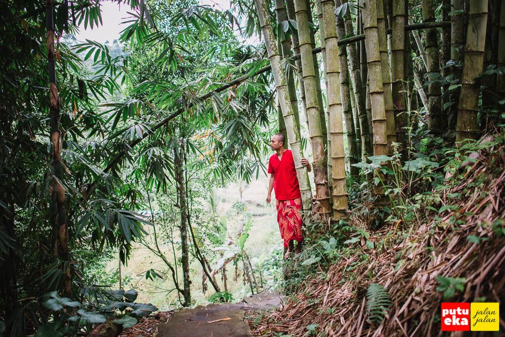Putu Eka Jalan Jalan yang sedang berada diantara pohon bambu