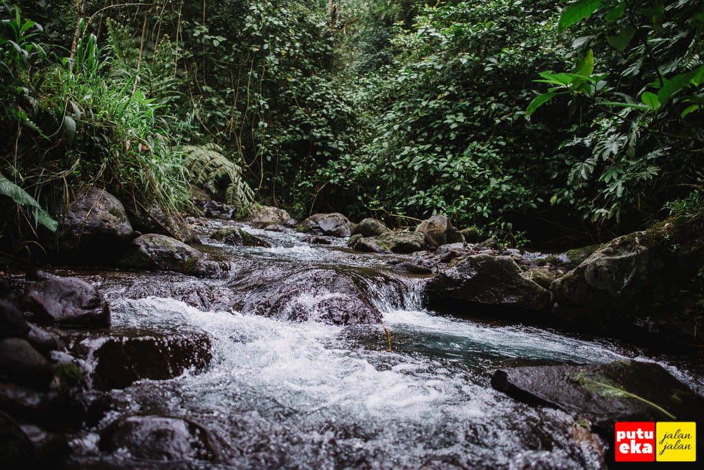 Aliran air sungai dari air terjun yang Nampak segar