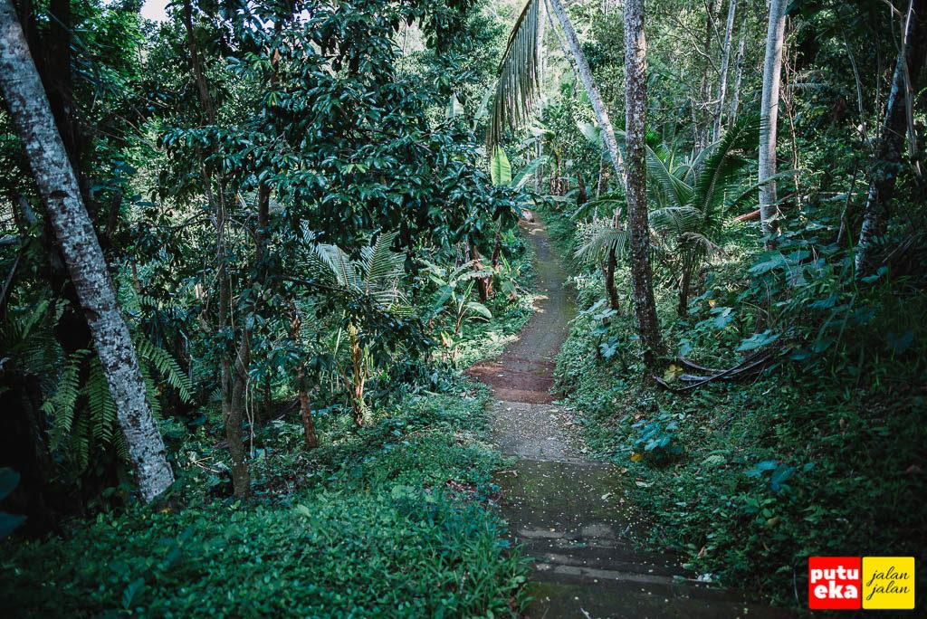 Undakan beton menuju air terjun dengan pepohonan disebelah kiri dan kanan