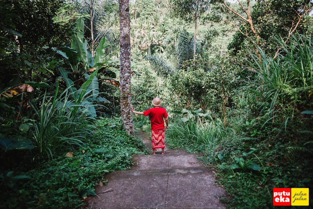 Putu Eka Jalan Jalan sedang berhenti disebelah pohon kelapa