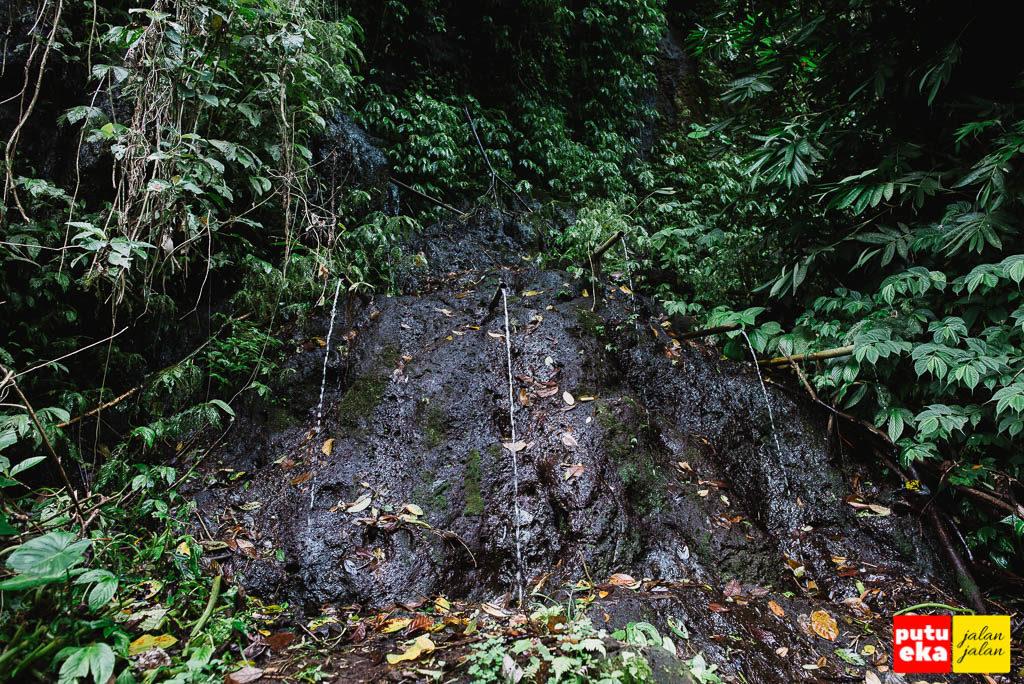 Pancuran kecil yang mengalir dari tebing disebelah jalan setapak