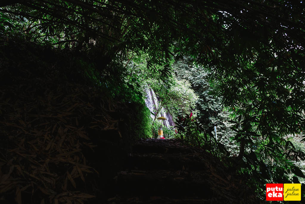 Menelusuri lorong dari pohon bambu