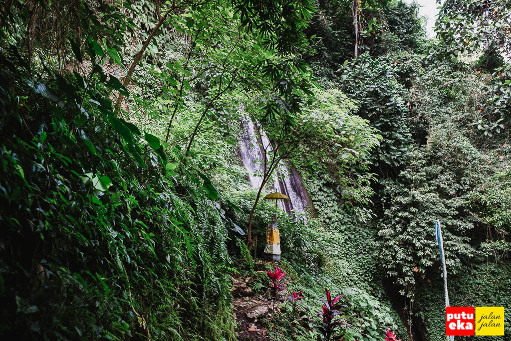 Air Terjun Kuning mengintip malu-malu dari kehijauan tumbuhan