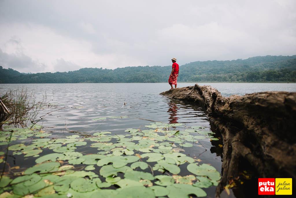 Berdiri di ujung kayu yang tumbang ke dalam danau