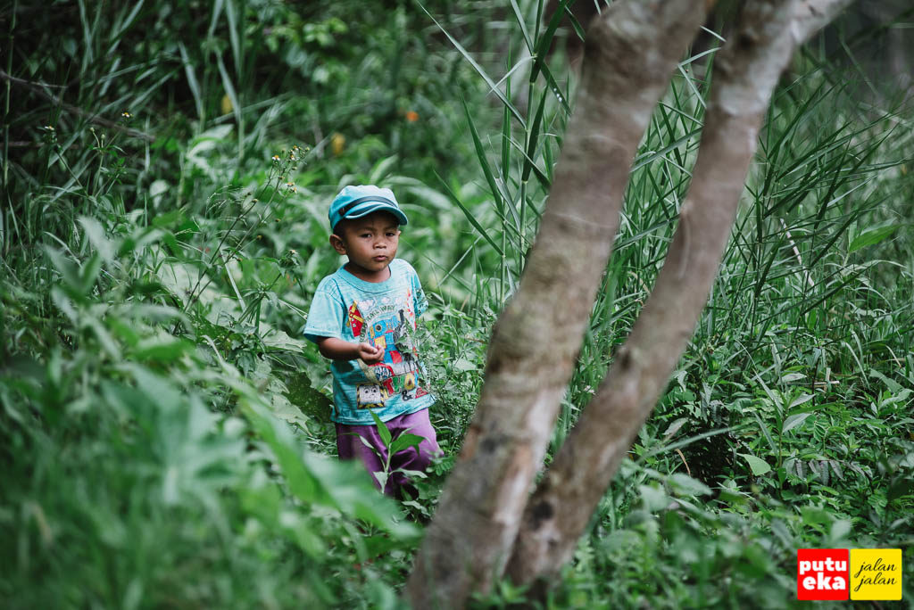 Anak kecil yang melewati semak semak mengikuti ibunya mencari rumput