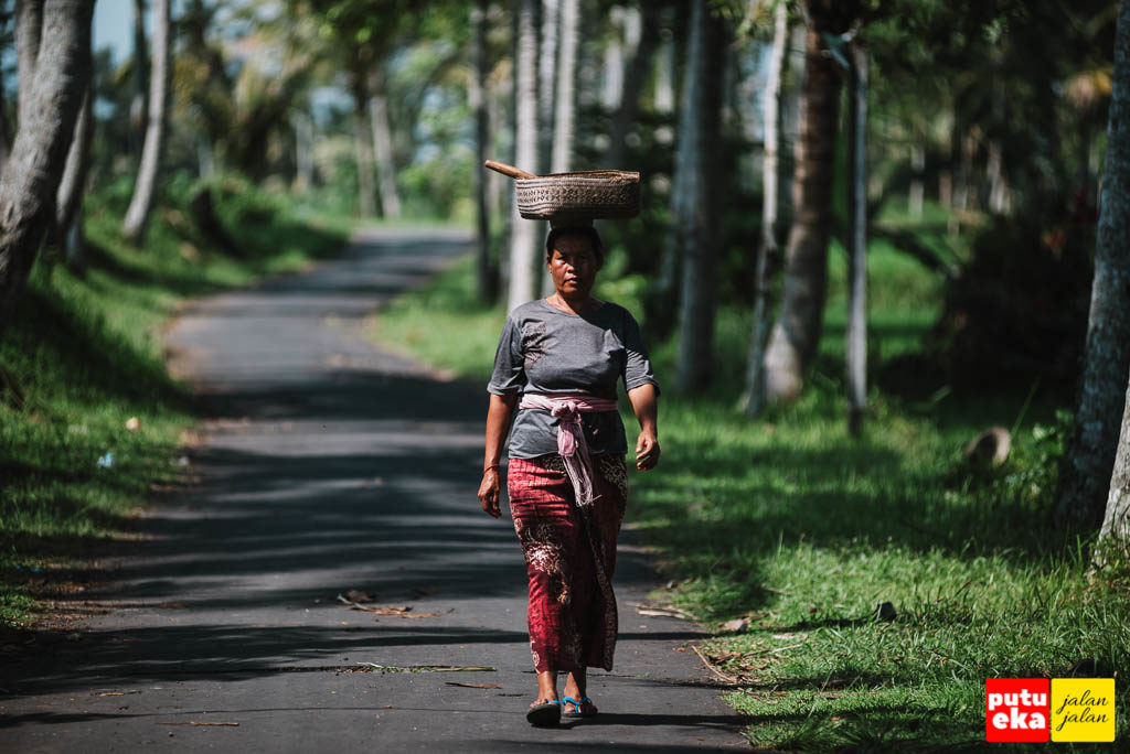 Ibu petani sehabis bersembahyang berjalan sepanjang jalan desa