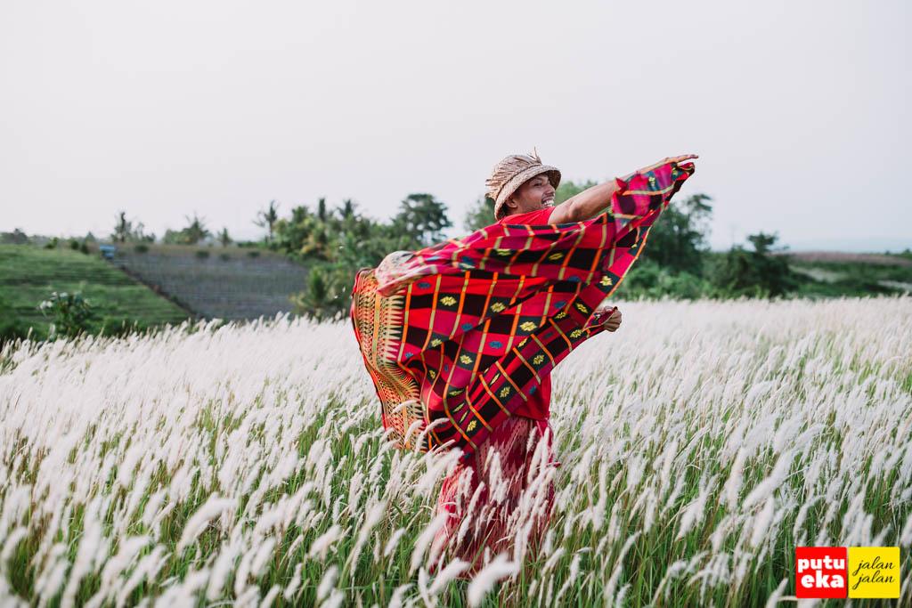 Putu Eka Jalan Jalan bermain dengan kain merah ditengah bunga Ilalang