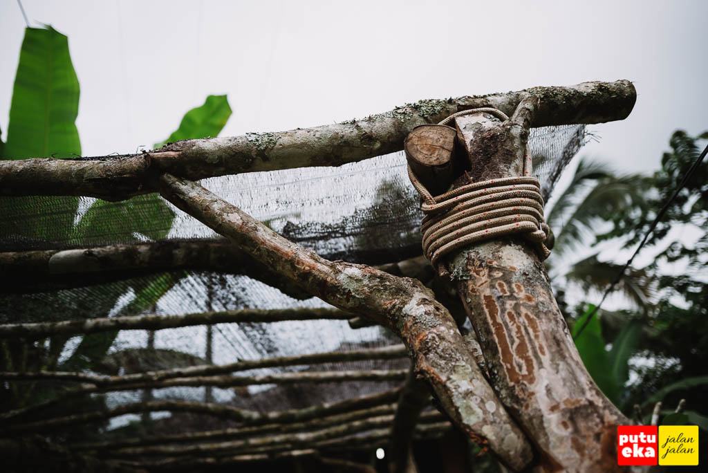 Batang pergola yang diikat menggunakan tali