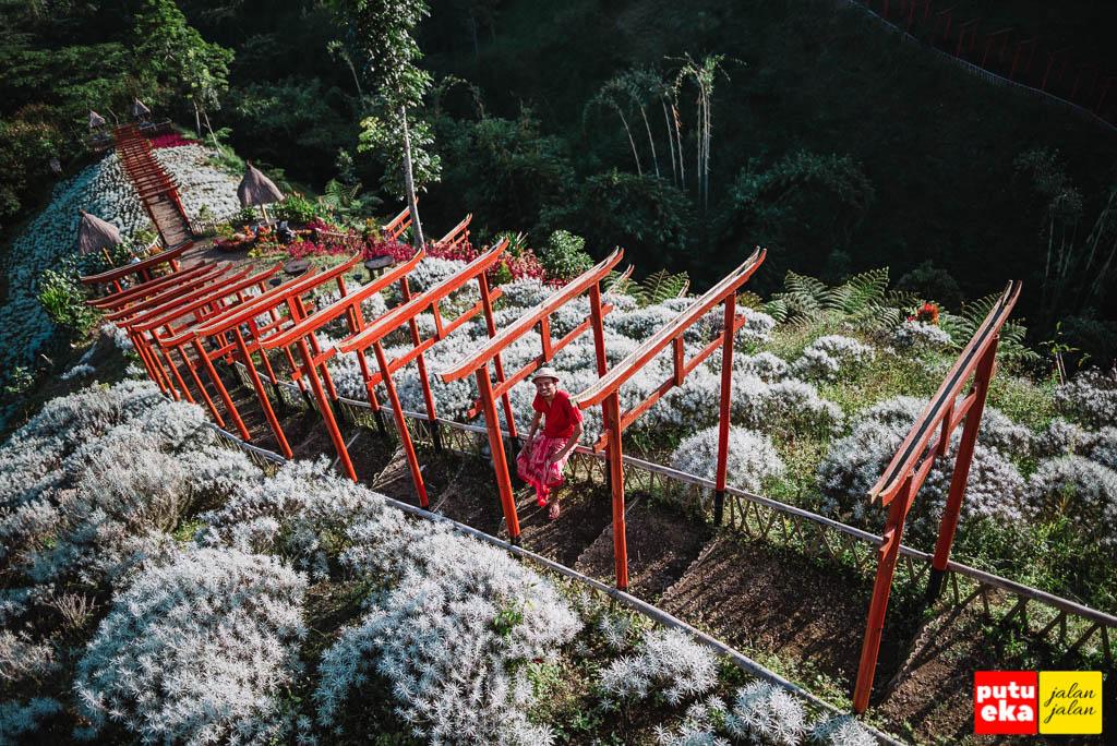 Putu Eka Jalan Jalan duduk diantara Torii Taman Jinja Bali