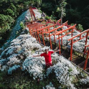 Taman Jinja Bali Penawar Rindu Liburan ke Jepang