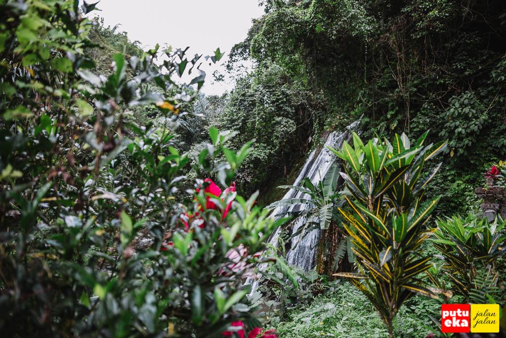 Air terjun mengintip malu dari celah dedaunan