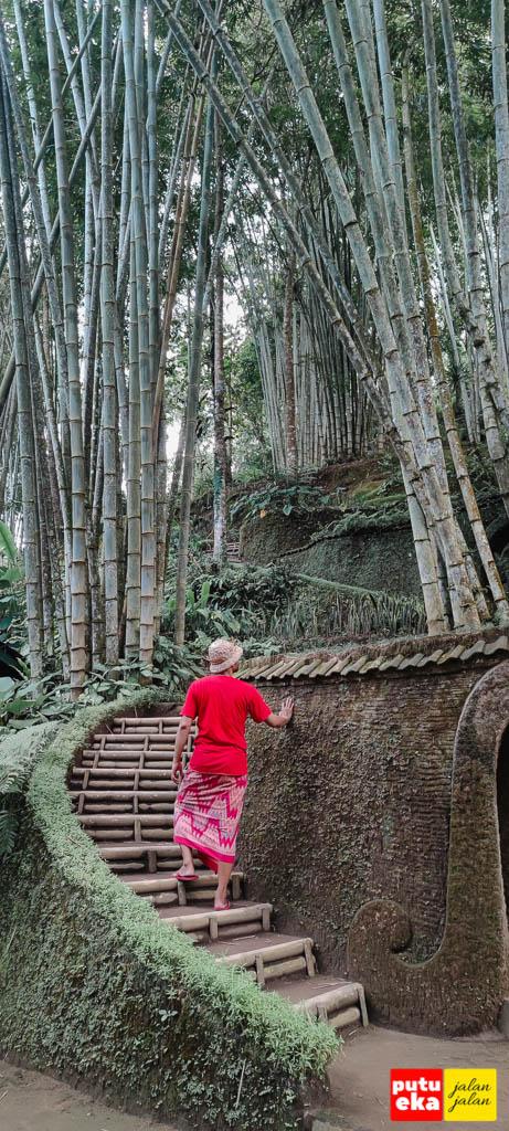 Jalan melengkung diantara tanaman Bambu